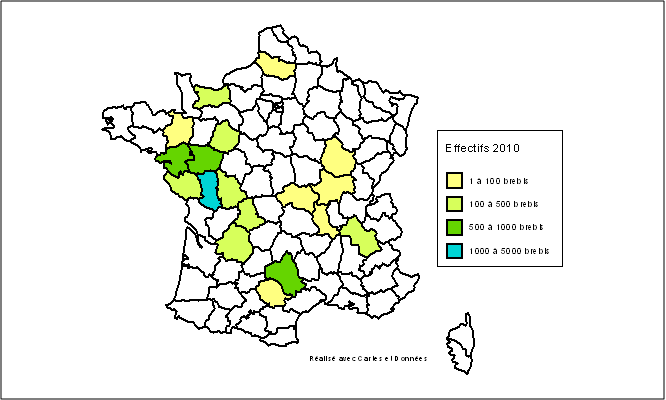 RougeOuest carte