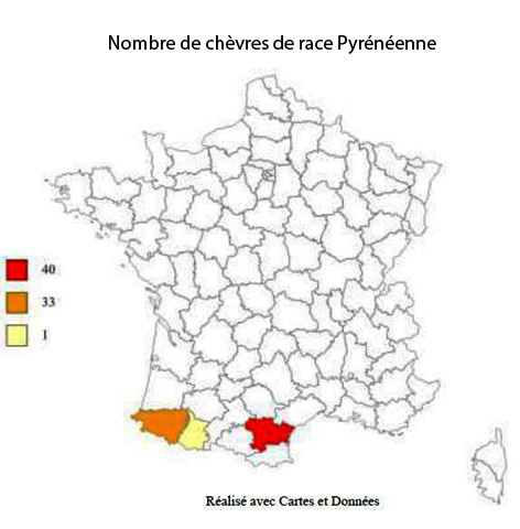 pyreneenne